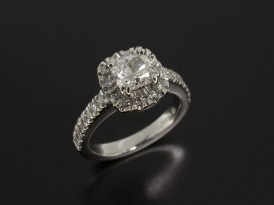 Platinum Double Claw and Castle Set Engagement Ring with Cushion Cut Diamond 1.01ct E Colour SI1 Clarity EXEX with Round Brillaiant Cut Diamonds 0.39ct Total